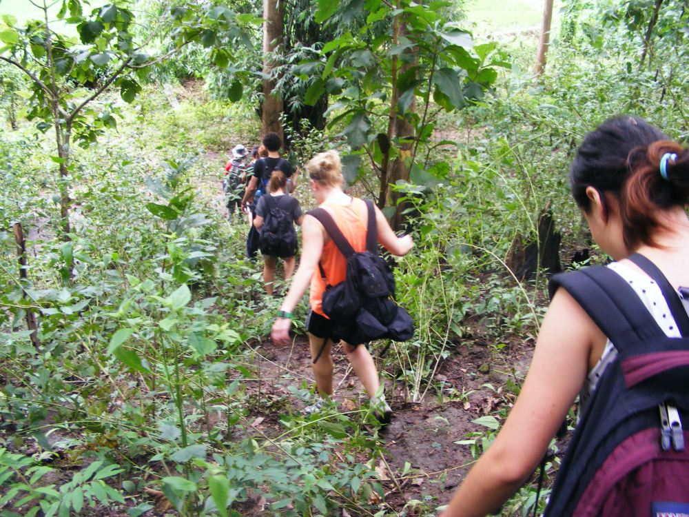 Trekking in Northern Thailand, near Chiang Mai